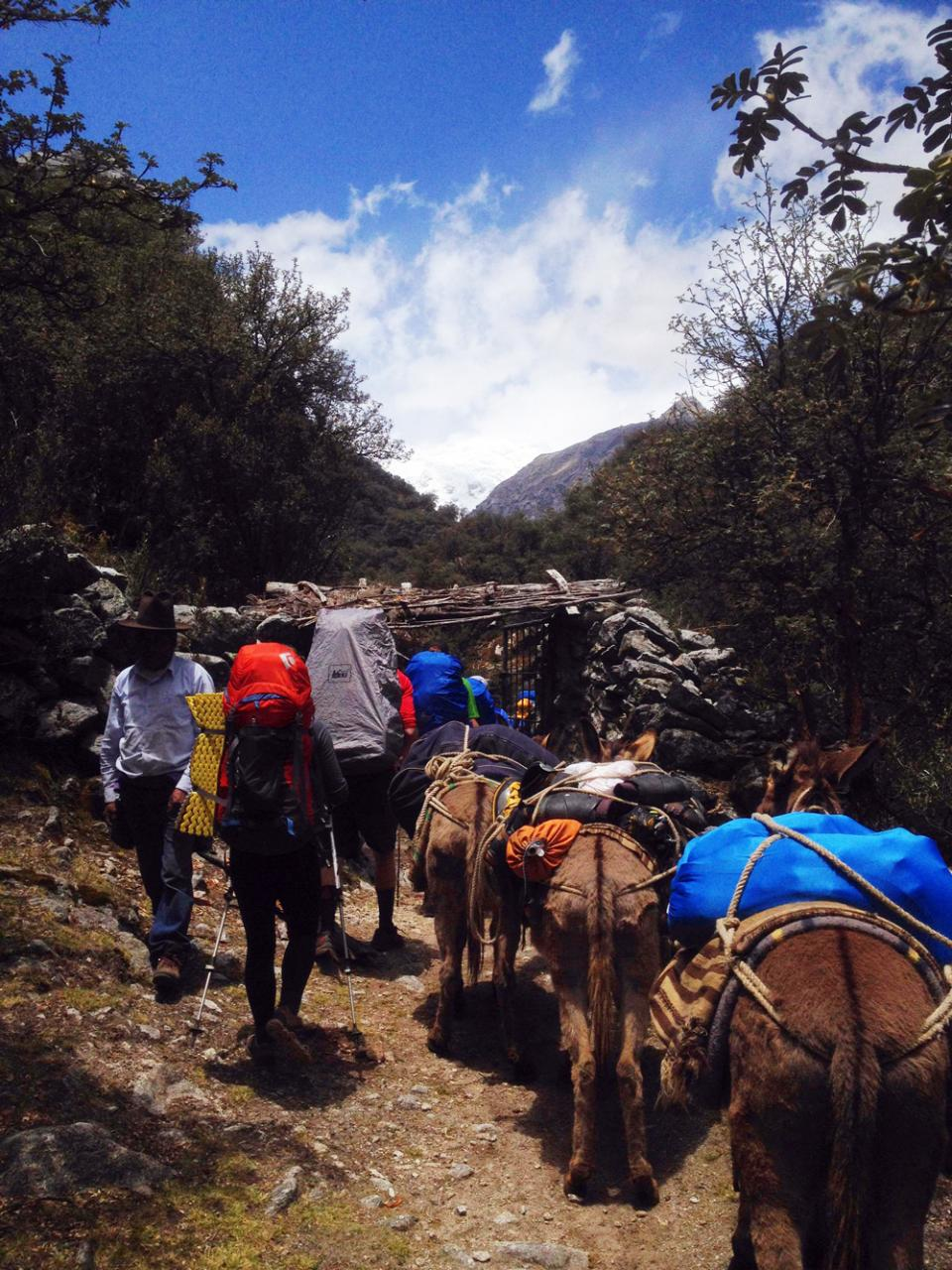 Hiking in with the Burros